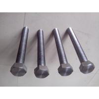 Quality Stainless Steel Hex Head Screw Bolts For Building Industry Machinery for sale