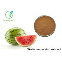 Quality Non - Irradiated Plant Extract Powder Watermelon Rind Extract Powder for sale