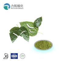 Mulberry  leaf extract powder / DNJ Weight loss activities against a-glycosidase for sale