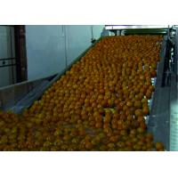 China Intelligent Vegetable Fruit Production Line Automatic Packaging Conveyor Systems on sale