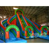 Quality 19.7 ft Double Lane Inflatable Slide for sale