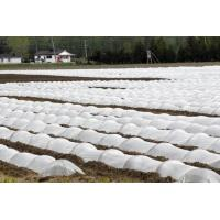 Buy cheap Agriculture Non Woven Polypropylene Fabric Anti Aging SGS Certification from wholesalers