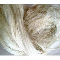 Quality Gypsum material 100% rubber fibre natural raw bleached textile uv ug grade sisal fiber price for sale