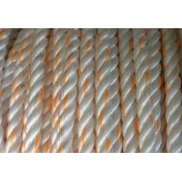 Quality supply 3/8/12/24 plaited polypro marine mooring ropes for sale
