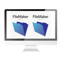 Quality SQL Data Multi Language Filemaker Pro Software For Windows / MAC for sale