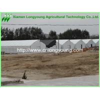 Buy used fixed roof greenhouses at wholesale prices