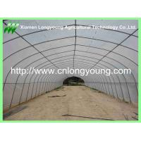 Quality tomato greenhouse used for sale