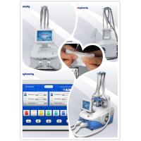 Quality 2 Handles Fat Freezing Cryolipolysis Slimming Machine For Face / Body for sale