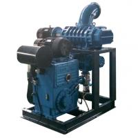 China roots type blower vacuum pump unit used for food process on sale