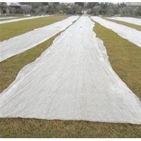 Buy Professional Agriculture Non Woven Fabric Color Customised For Weed Control Mat at wholesale prices