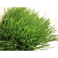 China Safe Fire Resistant Artificial Grass Football Pitch Easy Installation on sale