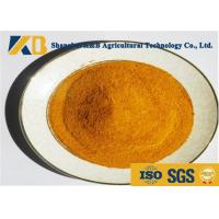 Quality 90% Digestibility Ratio Corn Protein Powder Without Anti - Nutritional Factor for sale