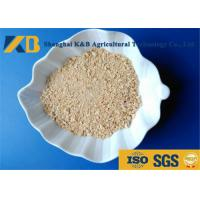 Quality Low Sugar Content Rice Protein Powder , Healthy Protein Additive For Diet Cattle for sale