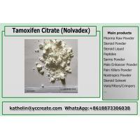 China Anti Estrogen Steroids Nolvadex / Tamoxifen Citrate For Steroid Cycle Post Cycle Therapy ( PCT) 54965-24-1 on sale