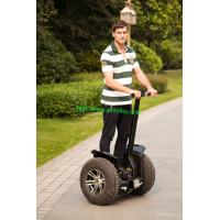 China Nice quality Electric scooter kart electric Segway on sale