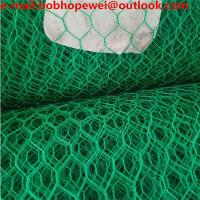 China Hexagonal wire netting/Hexagonal wire mesh/Chicken wire /chicken wire fencing/chicken wire for sale/hex mesh on sale