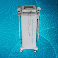 Quality Fat Freezing Cryolipolysis Slimming Machine , 2 Inch Handle Screen Beauty Equipment for sale