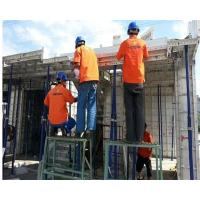 China Building Wall Suspended Slab Formwork Steel Formwork System Easy Operation on sale