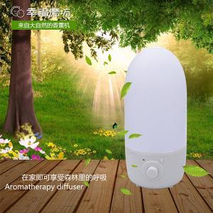 China Decorative mist humidifiers ultrasonic aroma Humidifier on sale