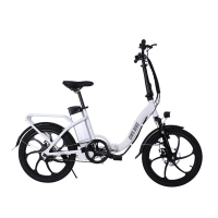 Quality 36V 500W Rear Drive 20 Inch Folding Electric Bike for sale