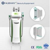 5in1 Portable Home Cryolipolysis Fat Freeze Cryo Slimming Machine for sale