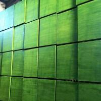 Quality WBP Green Plastic Film Faced Plywood For Concrete Formwork Construction for sale