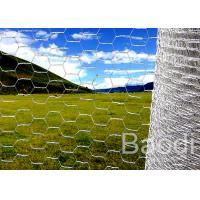 Quality Rolled Galvanized Iron Chicken Wire Mesh Hexagonal Shape For Highway Guardrail for sale