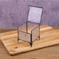 China Wholesale Glass Terrarium Box Square Glass Jewellery Boxes Black Frame for sale