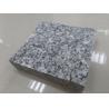 Top Quality Chinese Ariston Grey Granite,Granite Tile,Granite Slab,Granite Cubes,Grey Paving for sale