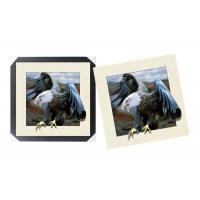 Quality Lovely Cute Animal Art Printing 5d Lenticular Picture / HD Animal Pictures for sale