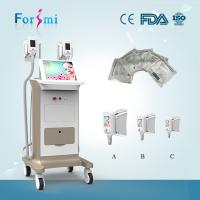 Quality Two handles Cryolipolysis Freeze Fat Machine for sale