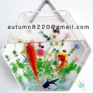 Quality Fashion cylinder acrylic fish aquarium for sale