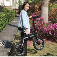 Quality Adult 2 Wheels Foldable Electric Scooter , Outdoor Activity Electric Bicycle for sale