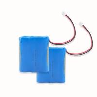 Quality 11.1V 2000mAh 18650 Battery Pack For Electronic Digital Product for sale
