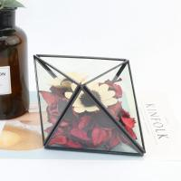 China Handmade Geometric Glass Terrarium Eternal Flower Glass Terrarium for Decoration for sale