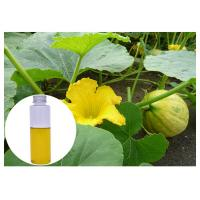 China Pumpkin Seed Natural Plant Extract Oil Liquid Improving Males' Sex Function on sale
