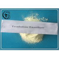 Quality Trenbolone Enanthate Trenbolone Steroids 99% Muscle Growth CAS 472-61-546 for sale