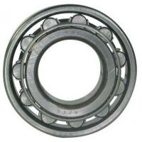 Quality 100mm Bore Cylindrical Roller Bearing NU 420 / NU 420 M Single Row 250mm for sale