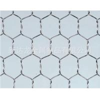 China 304 Stainless Steel Chicken Wire Netting / Hexagonal Wire Mesh For Woven Mesh on sale