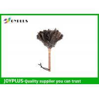 Buy Professional Home Cleaning Tool Ostrich Feather Duster Bamboo Handle at wholesale prices