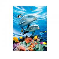 Quality Living Room Decoration 3D Lenticular Photography Sealife Dolphin Images With Deep Effect for sale