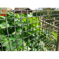 Customized Color Plastic Plant Support Mesh / Garden Net For Climbing Plants