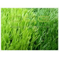 Quality High Resilience Synthetic Artificial Grass Football Field C Shape With Soft Touch for sale