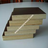 Quality Film faced plywood, Brown film faced plywood, 1220x2440mm,1250x2500mm (PLYWOOD MANUFACTURER) for sale