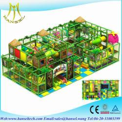 Guangzhou Hansel Electronic Technology Co., LTD