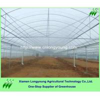 Buy greenhouse SALE at wholesale prices