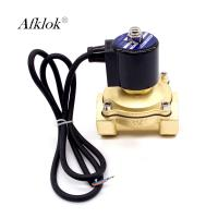 Quality Brass Underwater Solenoid Valve Waterproof IP68 230V AC ISO Certification for sale