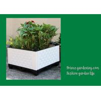 Quality Plastic Garden Square Planter Boxes , Outdoor White Rectangular Planter Box for sale
