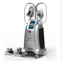 Quality New Design 4 handles cryolipolysis,hot cryolipolysis cool body sculpting machine,two handl for sale