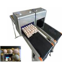 Quality Barcode Egg Printer / Continuous Tray Egg Food Inkjet Printer Chinese Made for sale